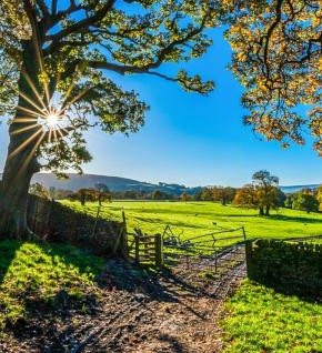 Cheap train tickets to James Herriot Country